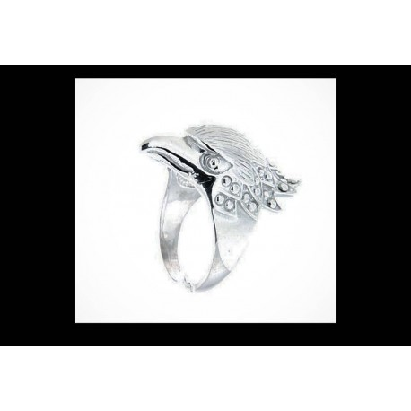 ANELLO Eagle Ice